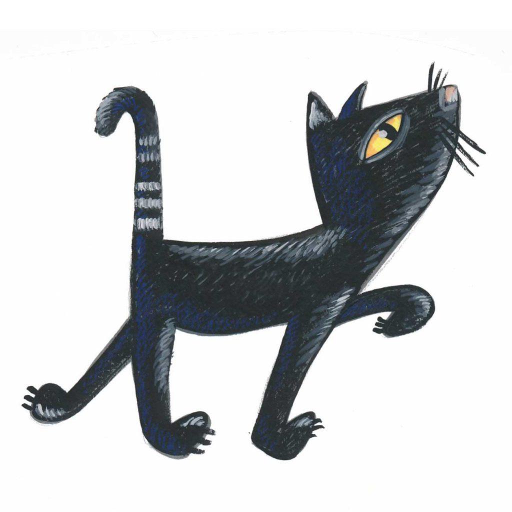 zwarte kat loopt rond