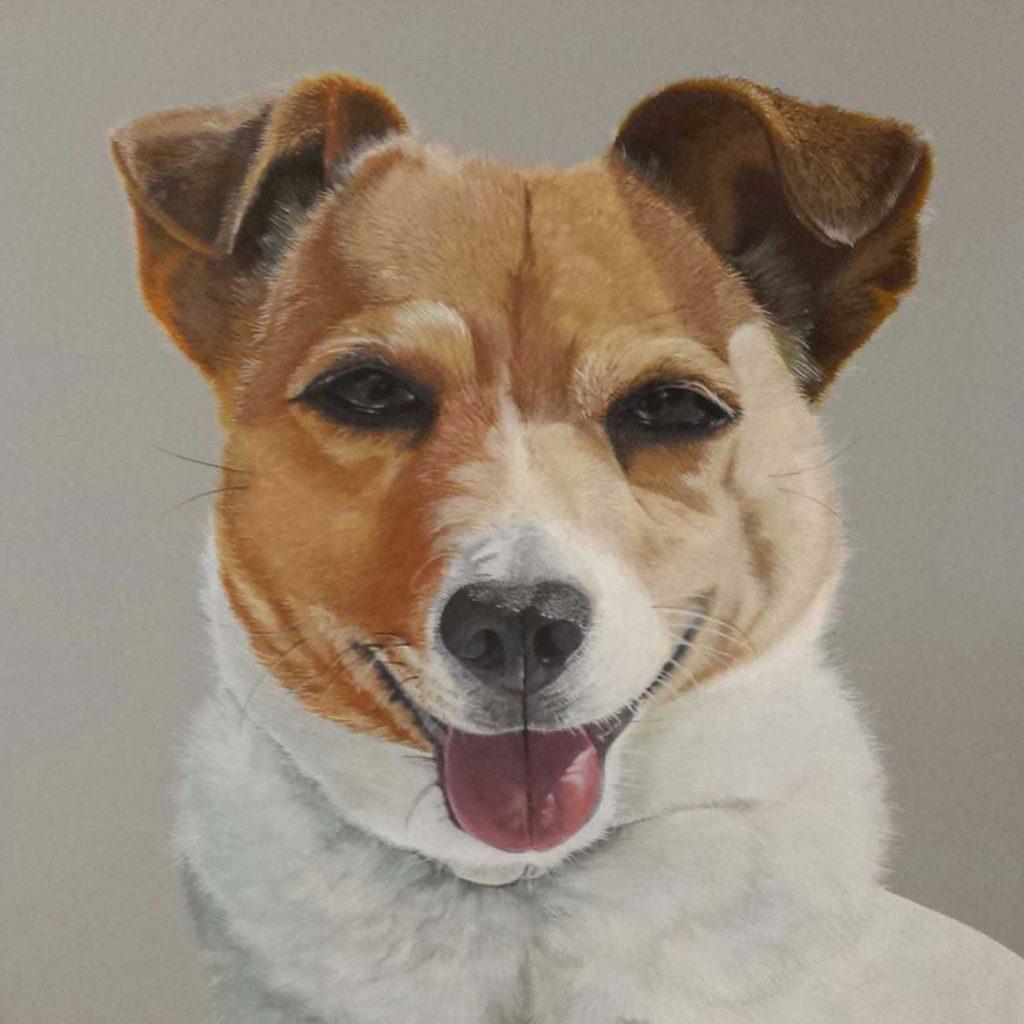 jack russell op doek geschilderd met grijze achtergrond